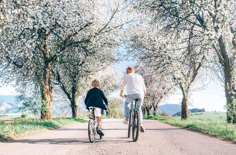 Father and son iding bicycles on country road under blossom trees. Healthy sporty lifestyle concept image stock image