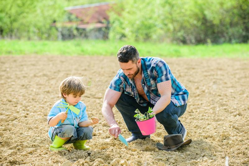 Father and son planting flowers in ground. earth day. rich natural soil. Eco farm. small boy child help father in royalty free stock photography