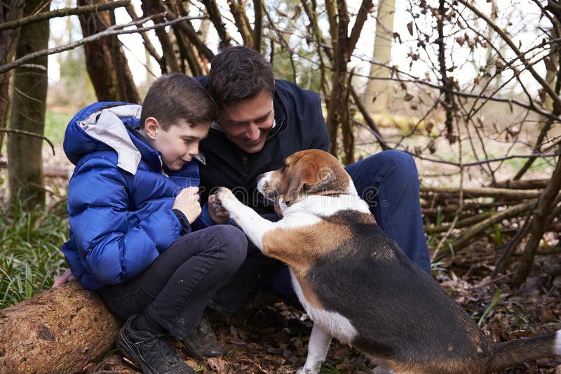 Father and son playing with dog under a shelter of branches royalty free stock photography