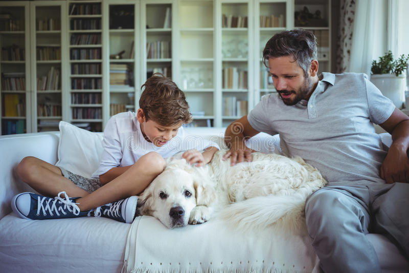 Father and son sitting on sofa with pet dog in living room royalty free stock images