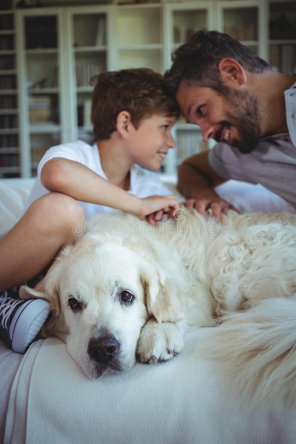 Father and son sitting on sofa with pet dog in living room stock image