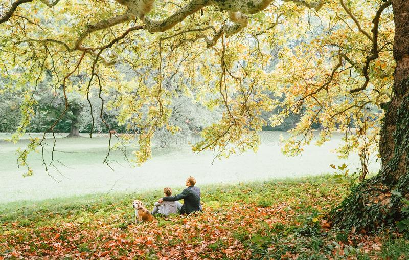 Father with son walk with beagle dog and enjoy warm autumn day stock photos