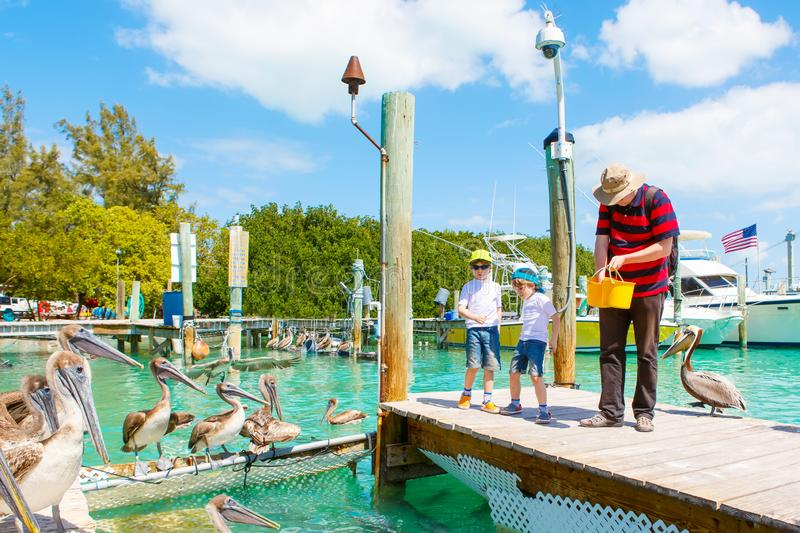 Father and two little kid boys feeding fishes and pelicans royalty free stock photos