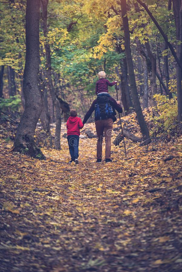Father and two sons walking in the autumn forest. Younger son sitting on his father`s shoulders. Back view royalty free stock images