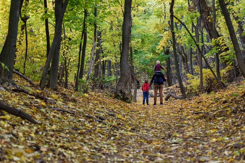 Father and two sons walking in the autumn forest. Younger son sitting on his father`s shoulders. Back view royalty free stock photo