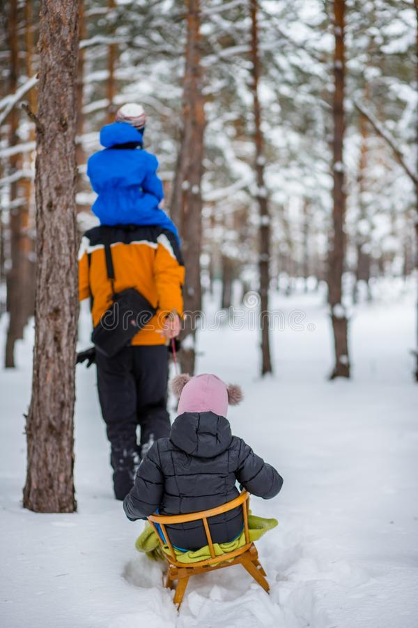 Father walks with his young children in the woods in winter royalty free stock images