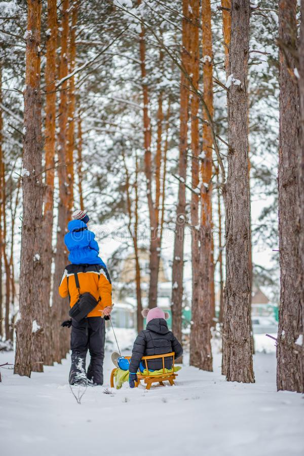 Father walks with his young children in the woods in winter royalty free stock photos