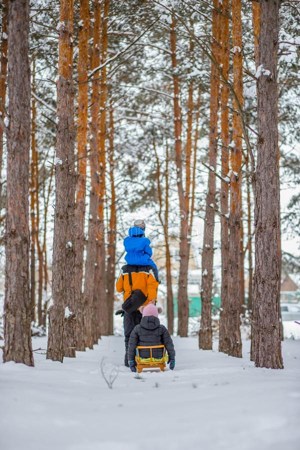 Father walks with his young children in the woods in winter stock photo
