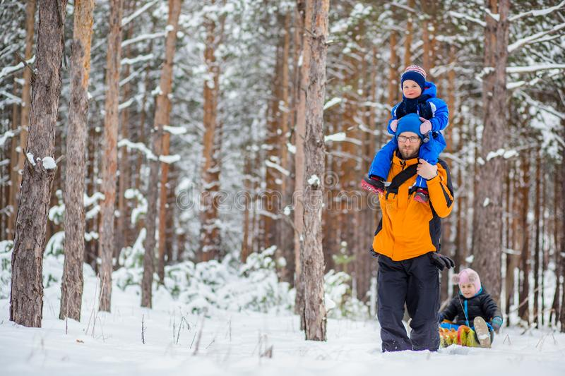 Father walks with his young children in the woods in winter royalty free stock photo