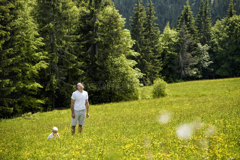 Father and young son walking on a green meadow on a background of green pine forests stock photo
