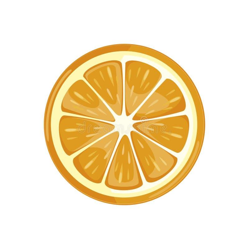 Fatia alaranjada fruto fresco suculento em um fundo branco Ilustração do vetor ilustração stock