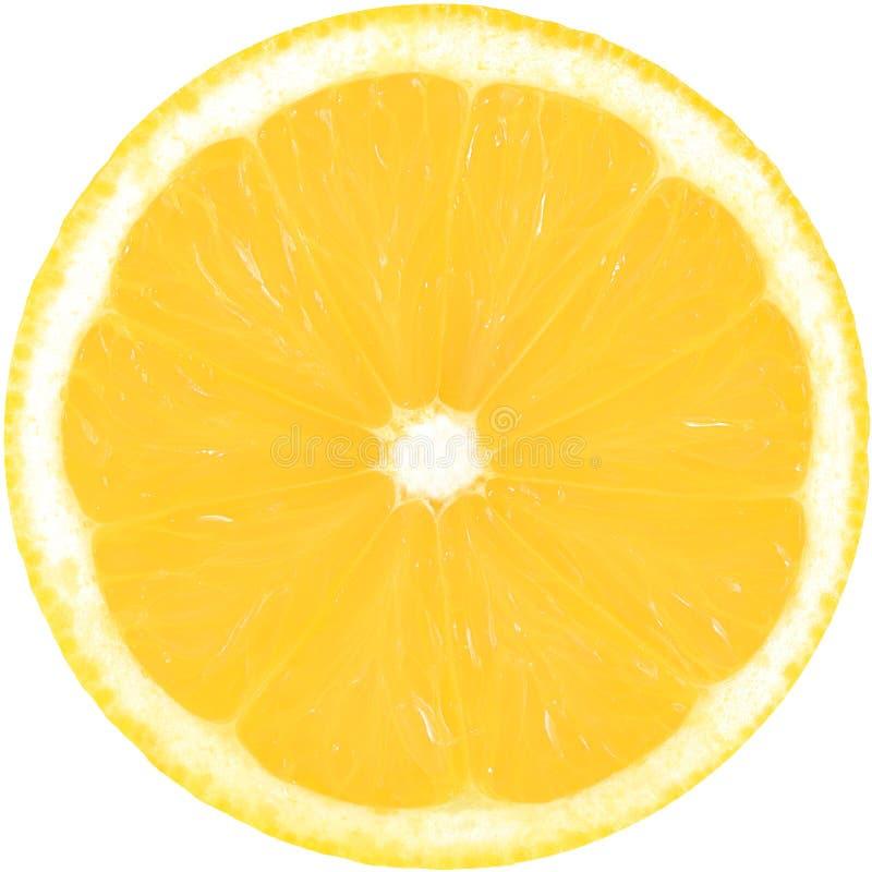 Fatia amarela suculenta de limão isolada em um fundo branco com trajeto de grampeamento O círculo perfeito do limão cortado Limõe fotografia de stock