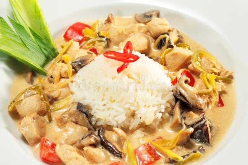 Fatia assada da galinha com montão do arroz imagens de stock royalty free