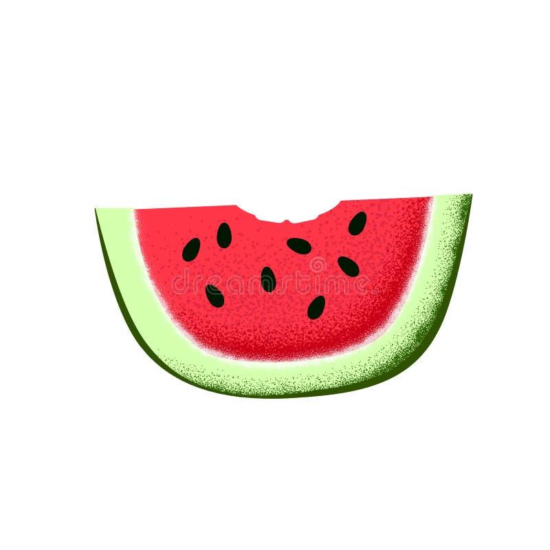 Fatia da melancia com marca da mordida Ilustração textured da melancia no fundo branco Ícone do fruto do verão isolado ilustração do vetor