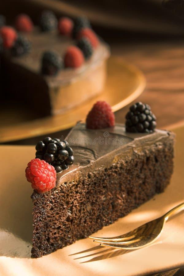 Fatia de bolo de chocolate fotografia de stock royalty free