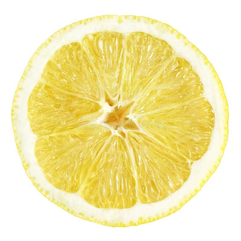 Fatia de fruto do limão fotografia de stock royalty free