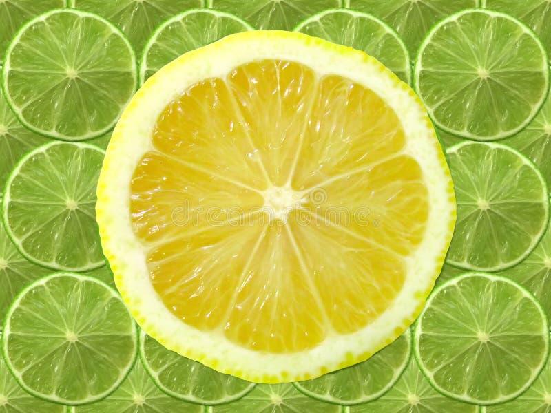 Fatia do cal e do limão fotos de stock royalty free