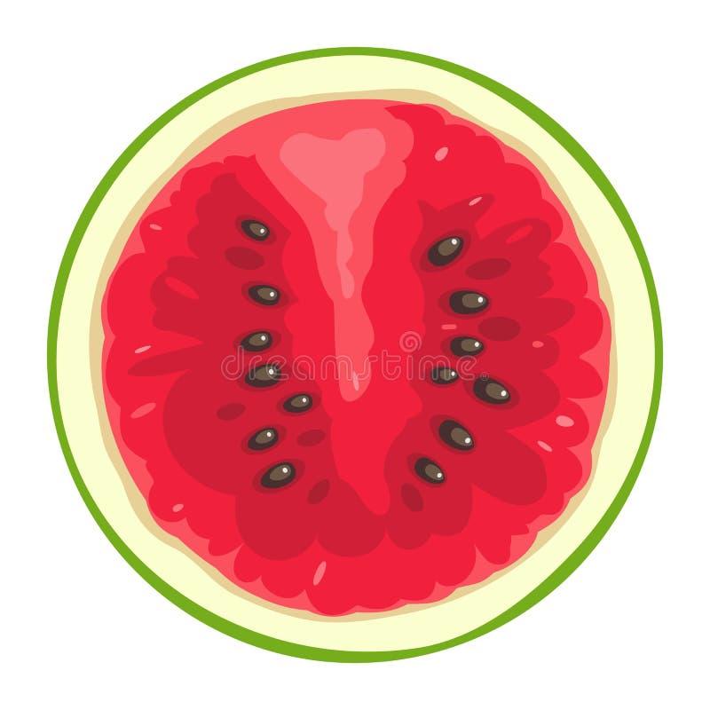 Fatia redonda de melancia no fundo branco Ilustração de cor lisa ilustração stock