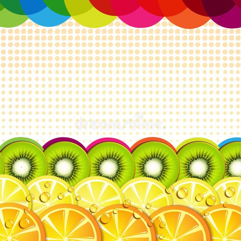 Fatias das frutas ilustração do vetor