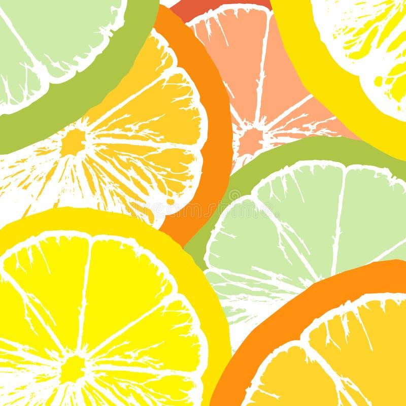 Fatias do suco do citrino ilustração royalty free