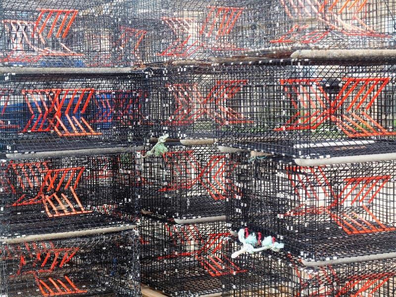 Fator dos potenciômetros de lagosta x fotografia de stock