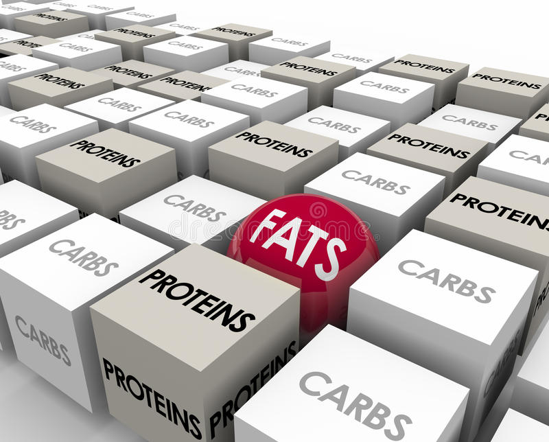 Fats Proteins Carbs Reduce Calories perdent le poids illustration stock