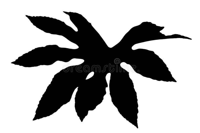 Fatsia Japonica black silhouette leaf. Commonly known as castor oil plant cut out and isolated on a white background stock illustration