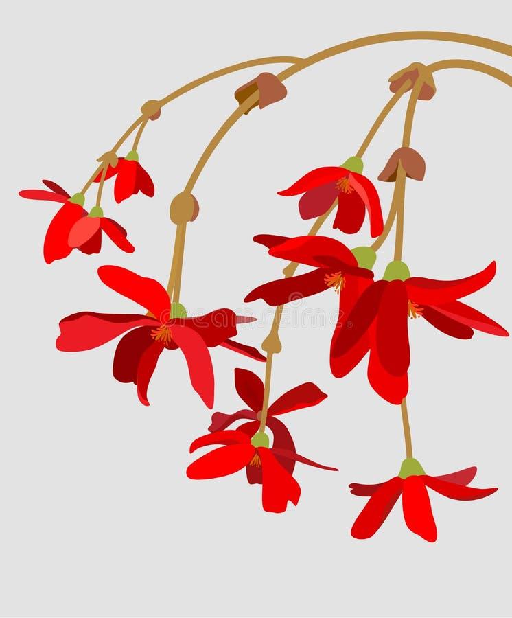 Fatta av röda blommor royaltyfri illustrationer