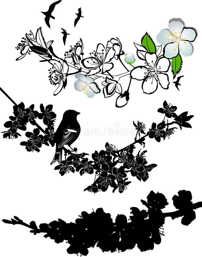 Fatta körsbärsröda blomningar stock illustrationer