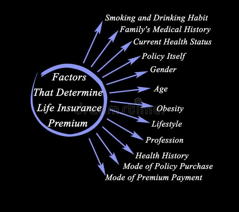 Fattori che determinano il premio assicurativo di vita illustrazione di stock