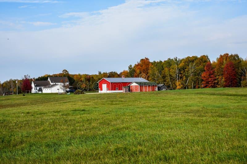 Fattoria con alberi d'autunno Red Barns fotografie stock