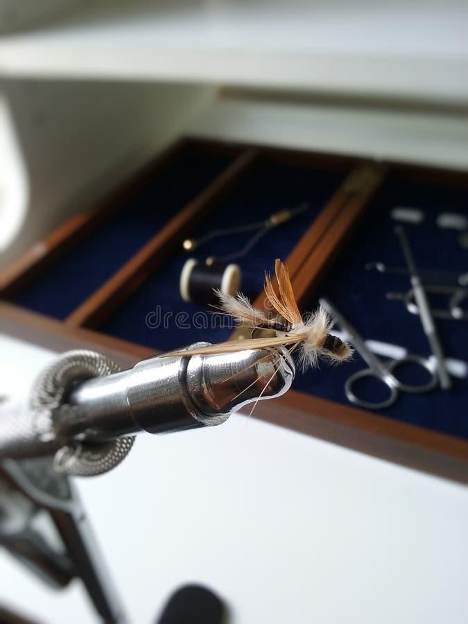 Fatura da mosca imagens de stock