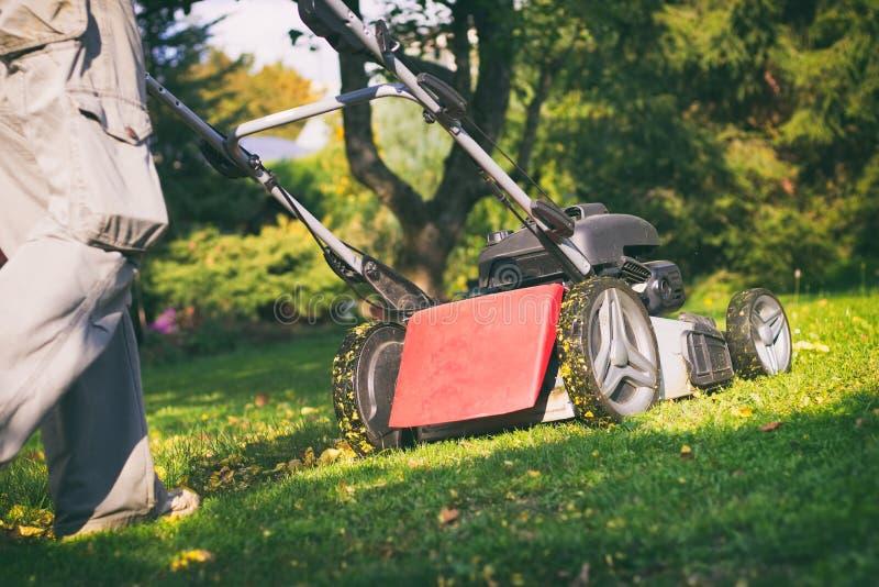 Fauchage de l'herbe avec une tondeuse à gazon image stock