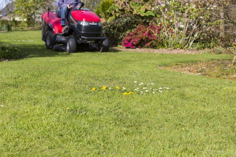 Fauchage de la pelouse avec le tracteur photo libre de droits