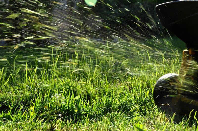 fauchage de pelouse photo libre de droits
