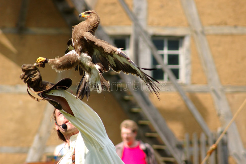Faucon, avion-école de faucon. photos libres de droits