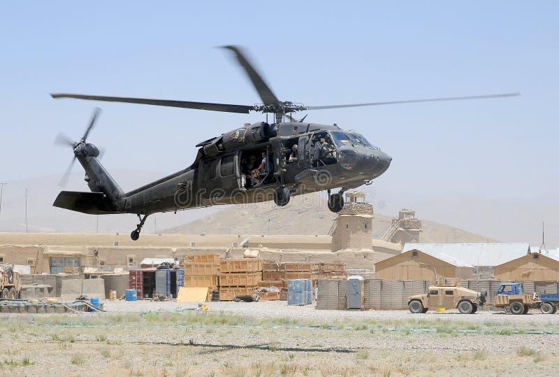 Faucon noir décollant dans la zone de combat photographie stock libre de droits