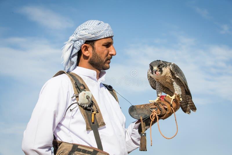 Fauconnier avec son faucon images libres de droits