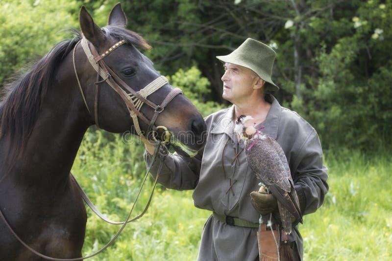 Fauconnier dans l'habillement traditionnel avec le faucon pérégrin et le cheval photo stock