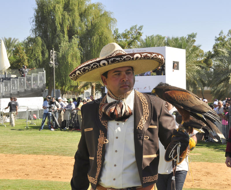 Fauconnier mexicain photos stock