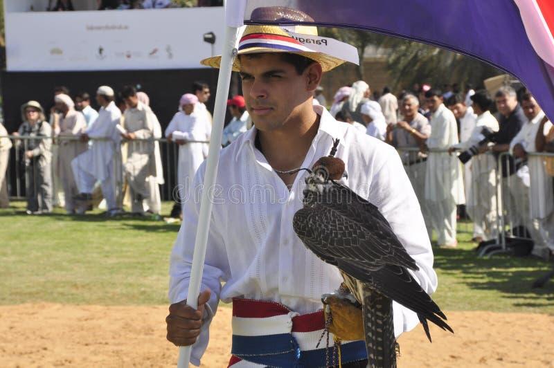 Fauconnier paraguayen images stock