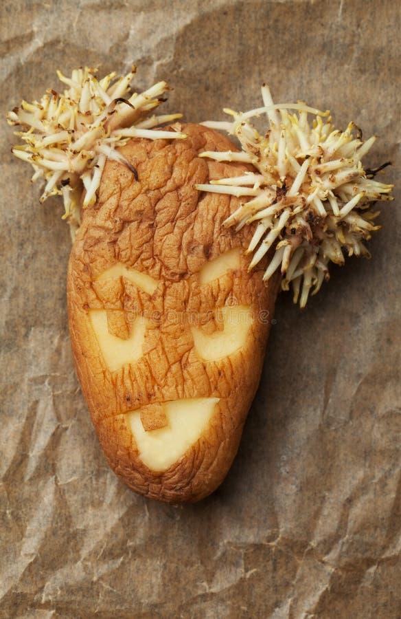 Faule Kartoffel mit verärgertem Gesicht stockbilder