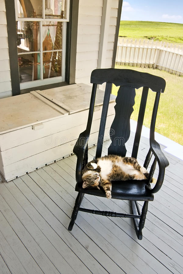 Faule Sommer-Land-Katze auf Schaukelstuhl der hinteren Veranda lizenzfreie stockfotografie