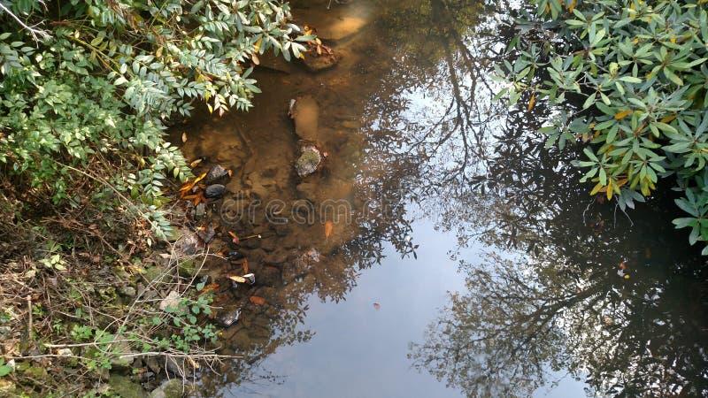Fauler Fluss stockfotos