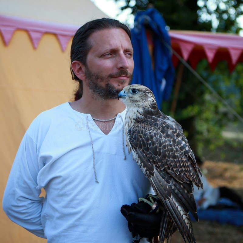 Fauna, Beak, Bird, Falcon stock photography