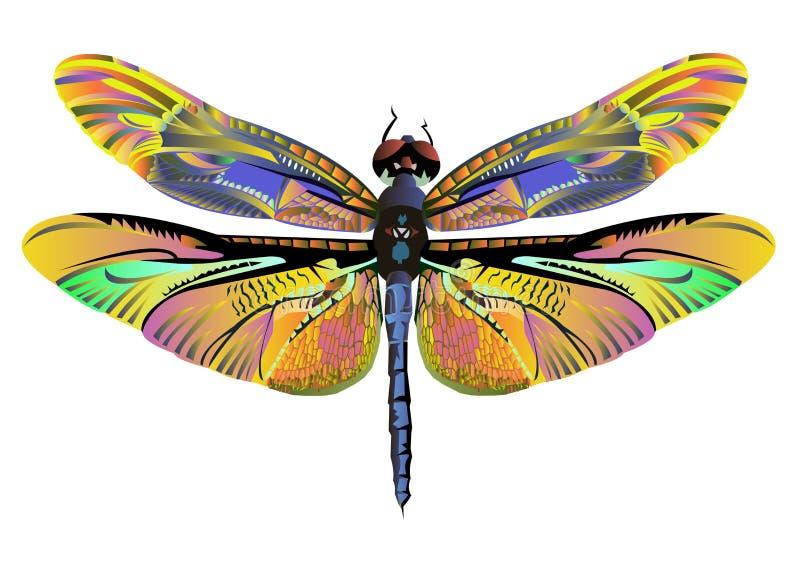 Fauna de la naturaleza de la libélula del arte del color del vector stock de ilustración
