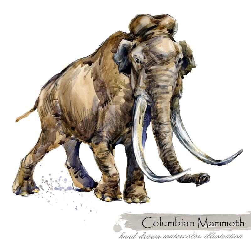 Fauna selvatica di era glaciale fauna preistorica di periodo Mammut colombiano illustrazione di stock