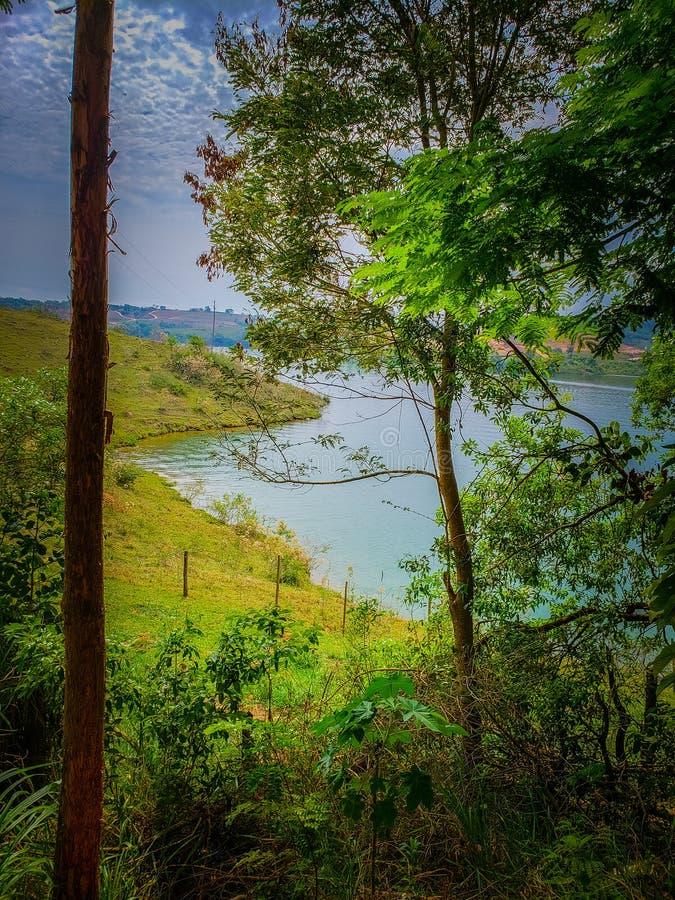 Faune et nature chez Lavras, Brésil images libres de droits