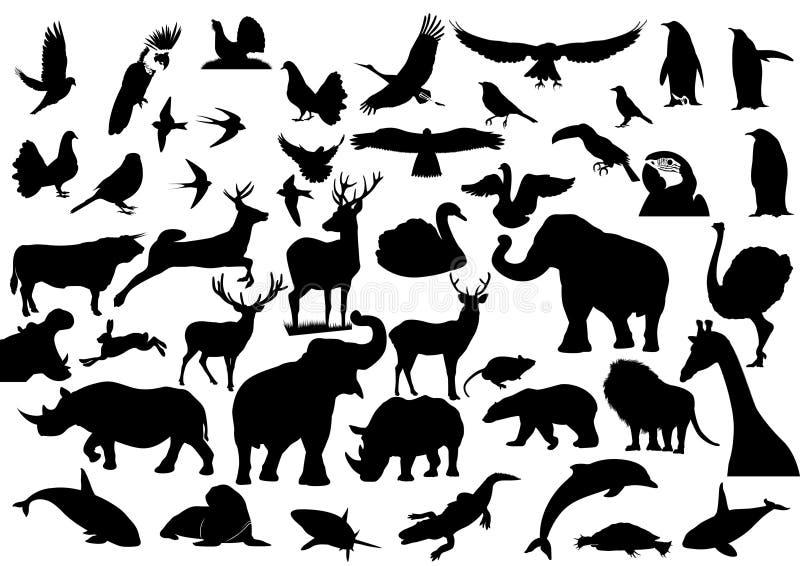 Download Fauny ilustracja wektor. Obraz złożonej z orzeł, tło - 22138145
