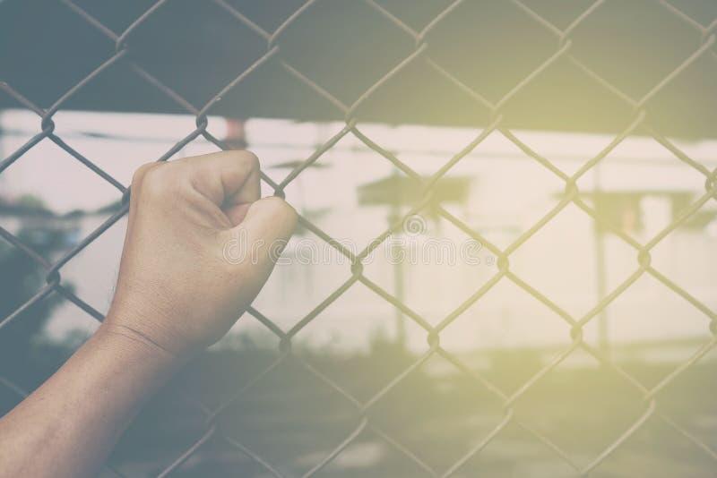 Faust auf Kettenglied-Zaun Background lizenzfreie stockfotos